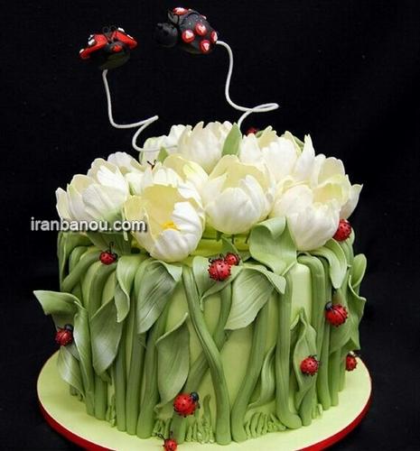 کیک تولد زیبا برای بزرگسال, کیک تولد عاشقانه
