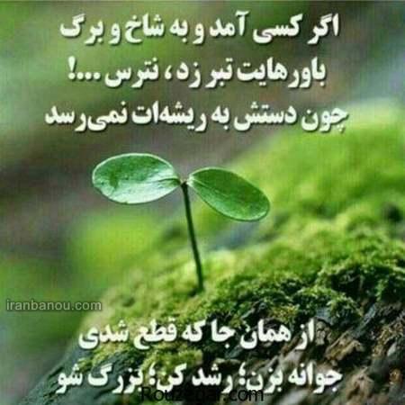 جملات ناب و قشنگ