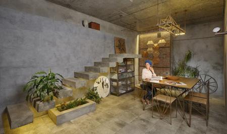 نگهداری گیاهان آپارتمانی,نحوه نگهداری گیاهان آپارتمانی