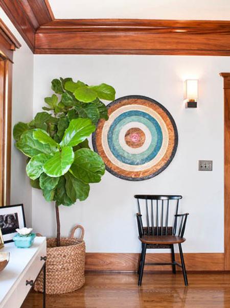 گلدان های مناسب گیاهان آپارتمانی,گیاهان آپارتمانی