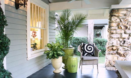 رشد و نمو گیاهان آپارتمانی, نحوه نگهداری از گیاهان آپارتمانی