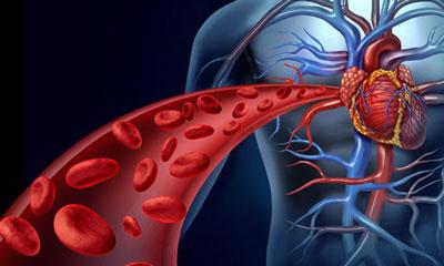 سیستم گردش خون, خستگی مزمن