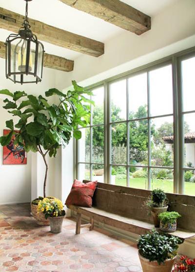 نحوه مراقبت از گیاهان آپارتمانی, تکنیک های مراقبت از گیاهان آپارتمانی