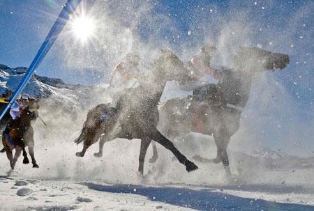 عکسهای جالب,تصاویر دیدنی,اسب دوانی