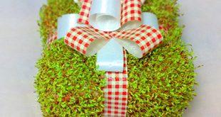 سبزه عید به شکل جعبه کادو