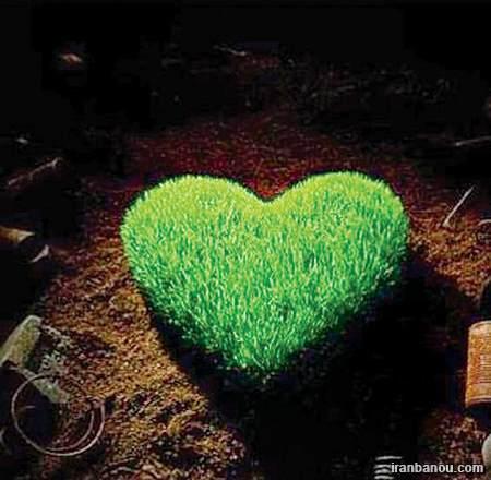 سبزه قلبی