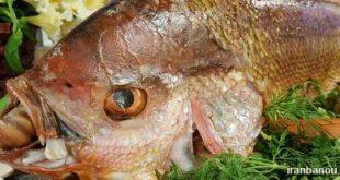 رول ماهی و کوکو سبزی