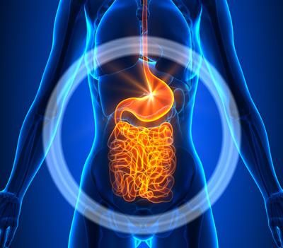 سیستم ایمنی بدن, کاهش وزن
