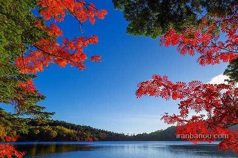 عکس طبیعت جهان