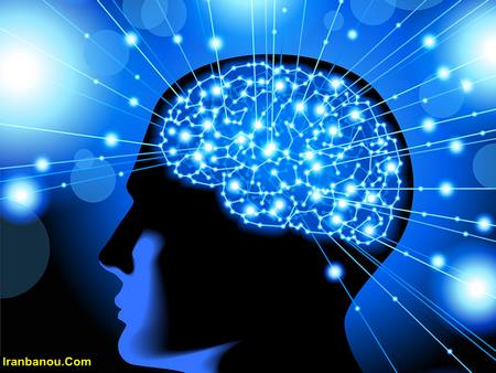 برای تقویت حافظه چه بخوریم