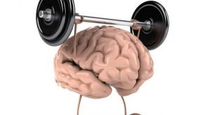 خوراکی تقویت حافظه