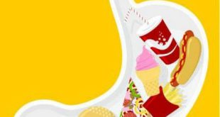 معنی هضم غذا