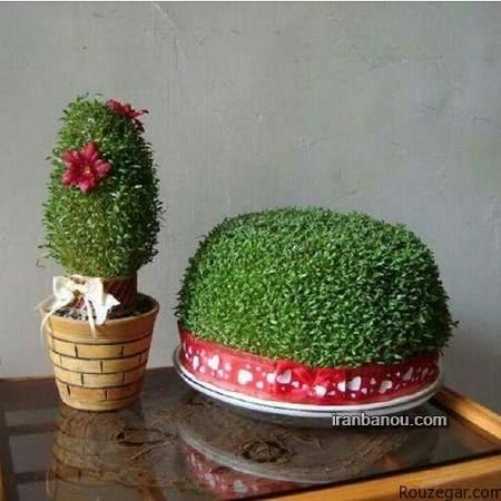انواع سبزه عید