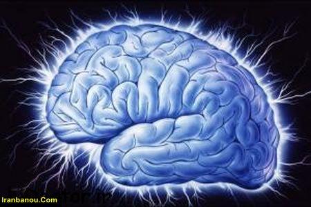 تقویت حافظه در طب سنتی