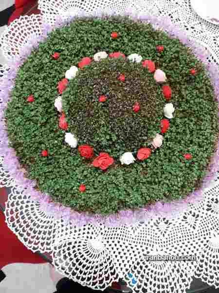 سبزه عید به شکل قلب