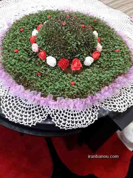 تزیین سبزه عروس