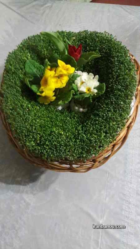 سبزه های فانتزی