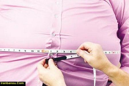 درمان چاقی شکم با گیاهان دارویی