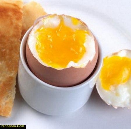 فواید سفیده تخمه مرغ
