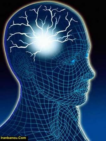 مراحل رشد مغز نوزاد