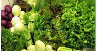 ویتامین سبزیجات و میوه ها