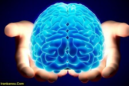 انشا در مورد مغز