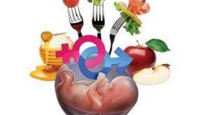 رژیم غذایی تعیین جنسیت پسر