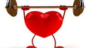 تاثیر ورزش بر بیماری های قلبی و عروقی