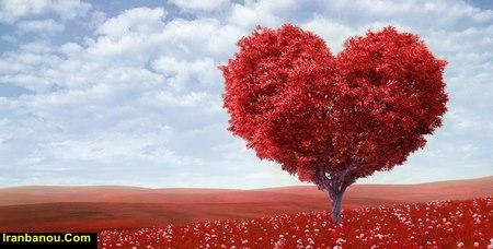 فواید عشق در زندگی