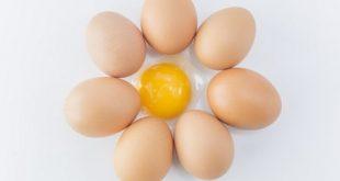 فواید زرده تخمه مرغ برای پوست