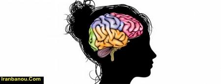 تحقیق در مورد مغز و نخاع