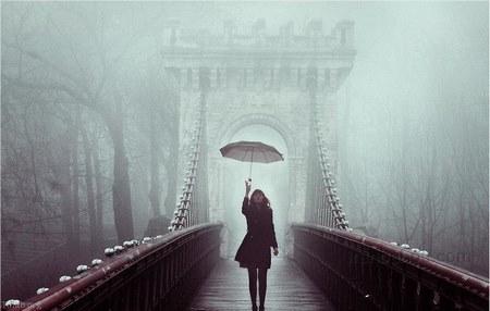 پروفایل بارانی