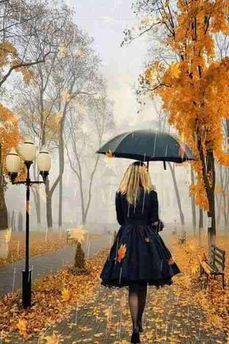 پروفایل باران