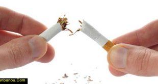 تغذیه بعد از ترک سیگار