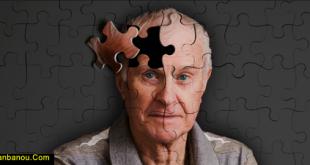 درمان ضعف حافظه در طب سنتی