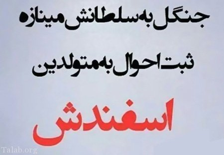 https://iranbanou.com/wp-content/uploads/2019/01/1767846151-talab-org.jpg