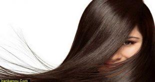 تقویت مو با روغن زیتون