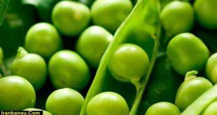 خواص نخود سبز | فواید مصرف نخود فرنگی