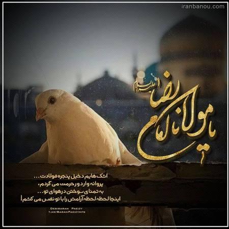 پروفایل تولد امام رضا