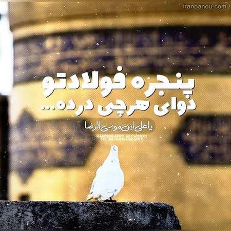 تصویر درباره ولادت امام رضا