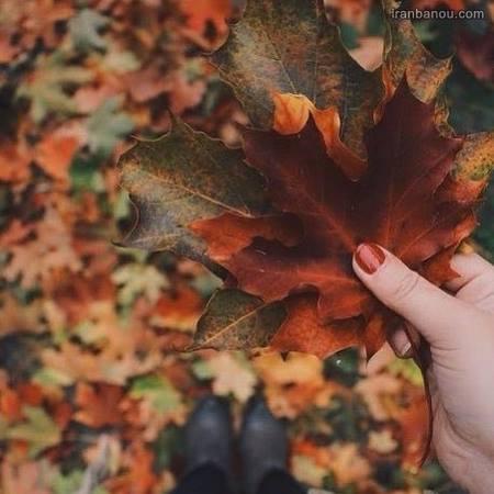عکس پاییزی عاشقانه دونفره