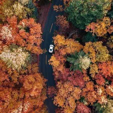 پروفایل پاییزی زیبا
