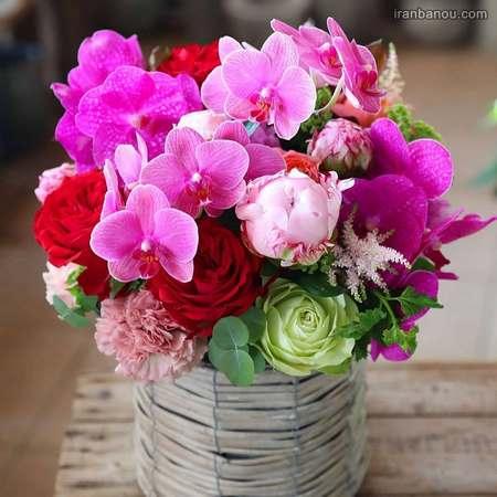 زیباترین عکس گل برای پروفایل