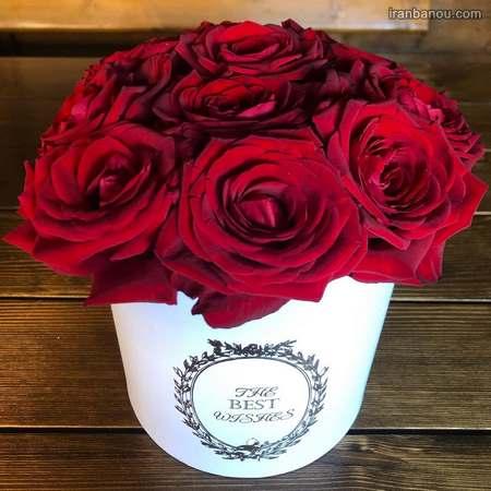 گل رز سفید و صورتی