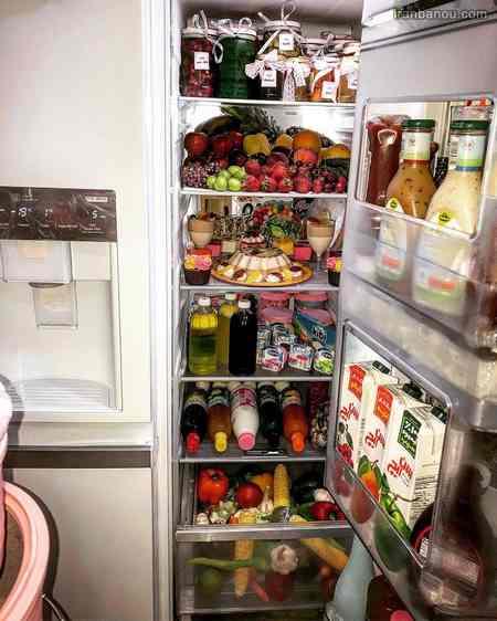 پیج اینستاگرام تزیین یخچال عروس
