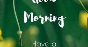 صبح بخير زيبا و عاشقانه