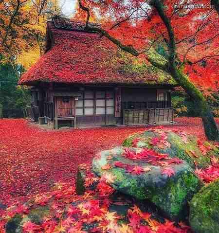عکس نوشته پاییزی زیبا