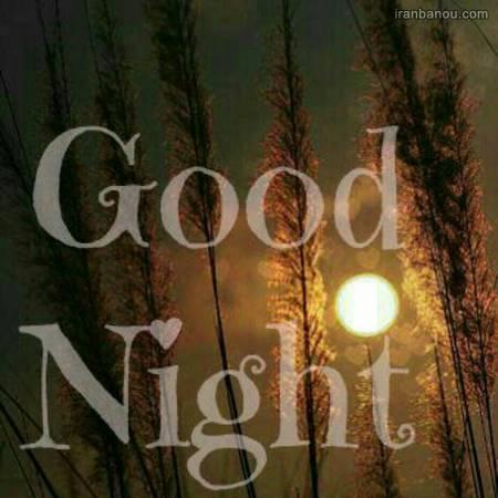 شب بخیر جدید