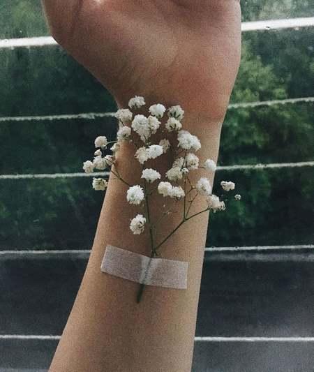 عکس گل عشق