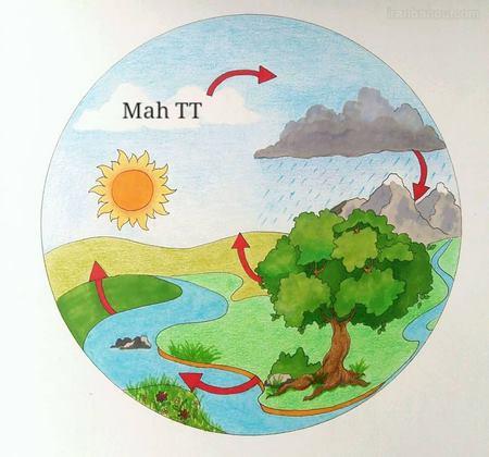 کاردستی چرخه ی آب